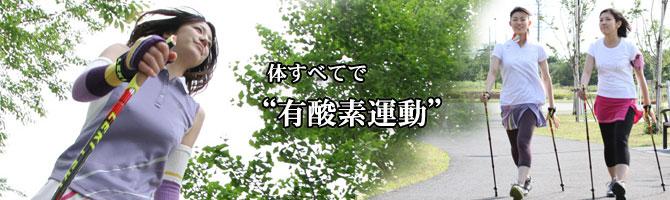 アップロードファイル 126-1.jpg